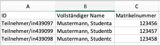 Screenshot Bewertungstabelle in Excel